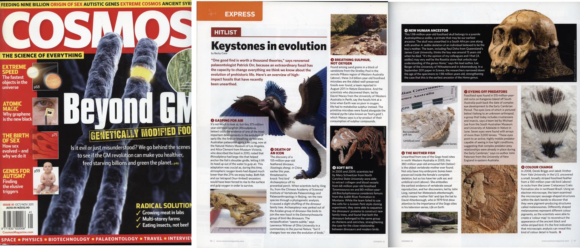 Keystones in Evolution - Cosmos 2011