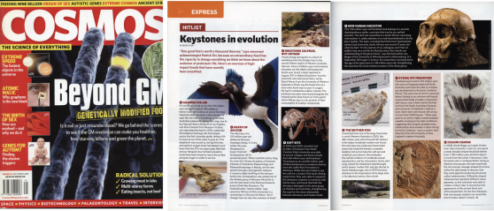 Keystones in Evolution - Cosmos 2011
